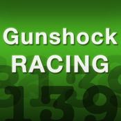 iCodes for Gunshock Racing