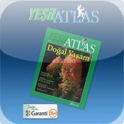 Yeşil Atlas 12