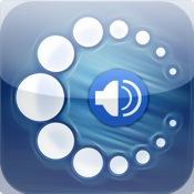 Audio Collins Mini Gem English-Polish & Polish-English Dictionary