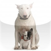 Bull Terrier With Puppy Snow Globe