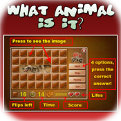 What Animal is it