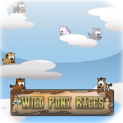 Wild Pony Races