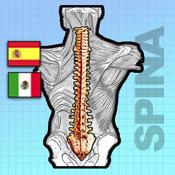 Sp Espina Dorsal Estudio Digital SPANISH v.