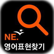 NE Expression Finder