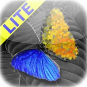 PhotoWizard Lite