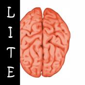 Allinson - Brainstorm LITE