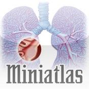 Miniatlas Lung Cancer