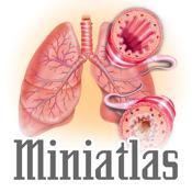 Miniatlas Asthma
