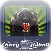Crazy Pinball Jungle