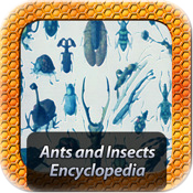 Ants and Insects Encyclopedia