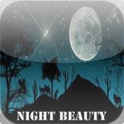Night Beauty