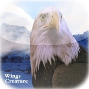 Wings Creature