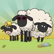sheeps premium