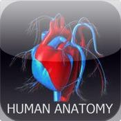 Human Anatomy - Free