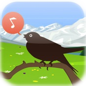 Chirp! Bird Songs USA