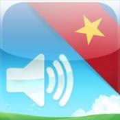 Gengo Flashcards - Vietnamese