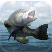 Bass Fishing Mania.