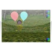 BalloonFly