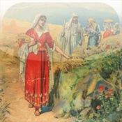 Wee Ones Bible Stories