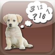 Pet Age Converter