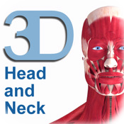 Muscle System (Head and Neck)