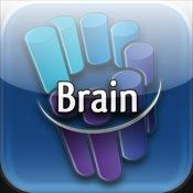 Radiopaedia Vol 1: Brain Radiology Teaching File