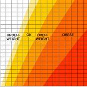 STAT BMI-Obesity Chart