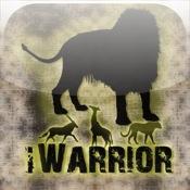 iWarrior