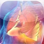 Blausen Respiratory Atlas