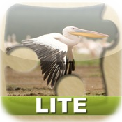 Bright Puzzles: Birds Lite