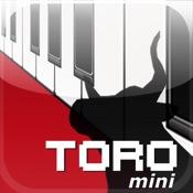 TORO mini synthesizer
